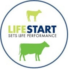 Life Start Set life Performance